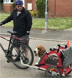 Basset bike carrier